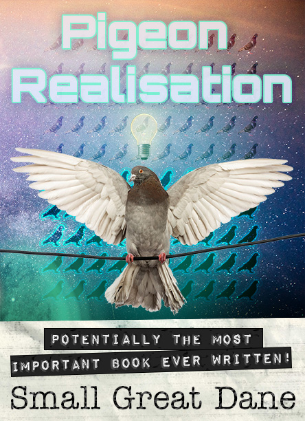 Pigeon Realisation Draft Cover